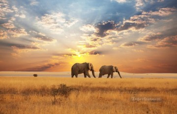 sun - Elephants Walking on Autumn Grassland Sunset Painting from Photos to Art